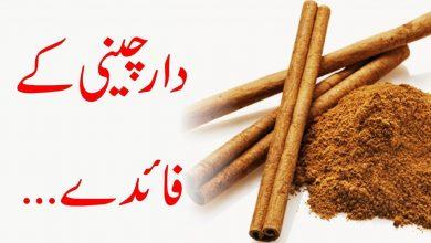 Photo of Best Herbal Medicine Cinnamon (Dar  Cheeni)