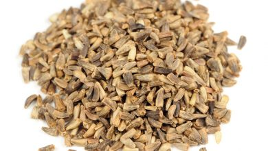 Photo of How to Choose the Best Carom Seeds(Ajwain) Herb For Kidney Stones