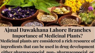 Photo of Best Herbal Medicine for Health Problem