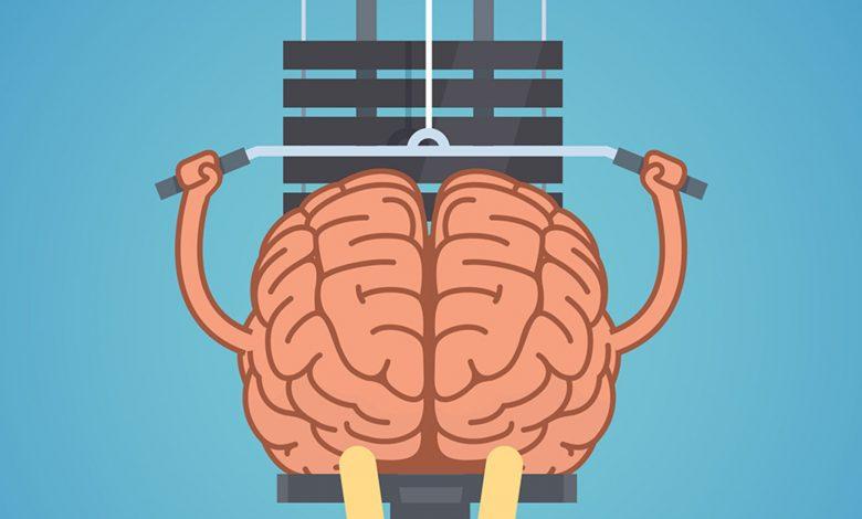 brainweight